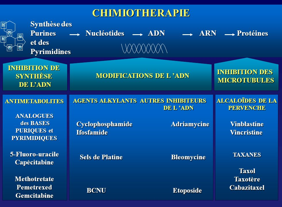 MODIFICATIONS DE L 'ADN