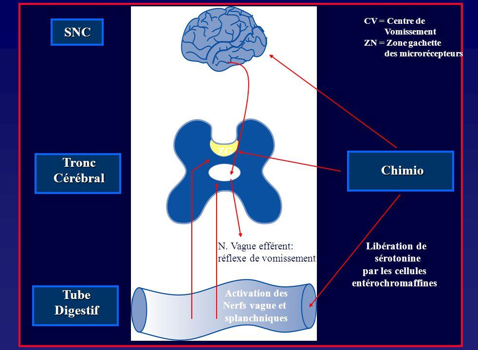 SNC Tronc Cérébral Chimio Tube Digestif