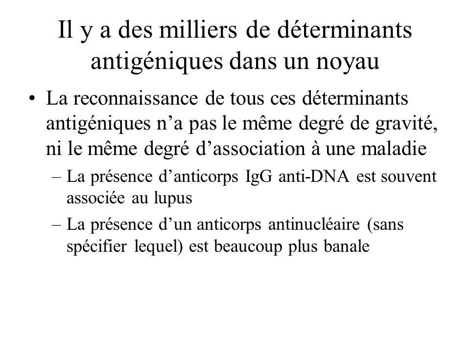 Il y a des milliers de déterminants antigéniques dans un noyau