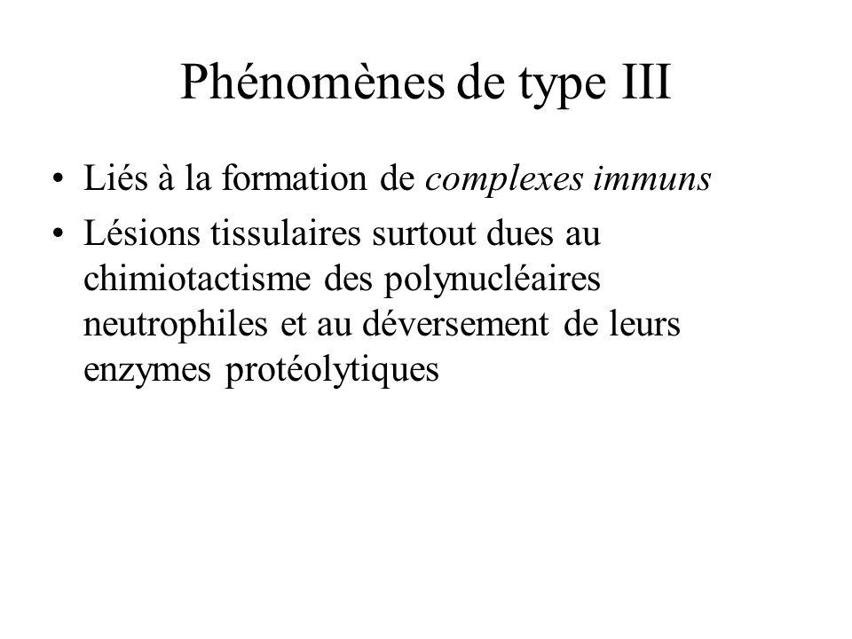 Phénomènes de type III Liés à la formation de complexes immuns