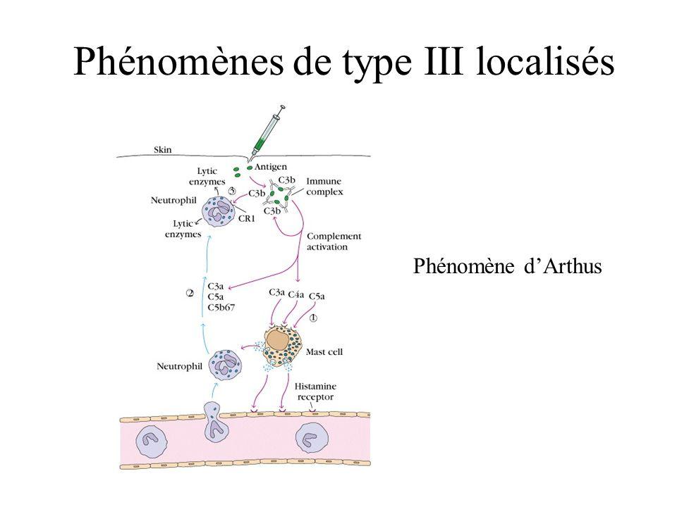 Phénomènes de type III localisés