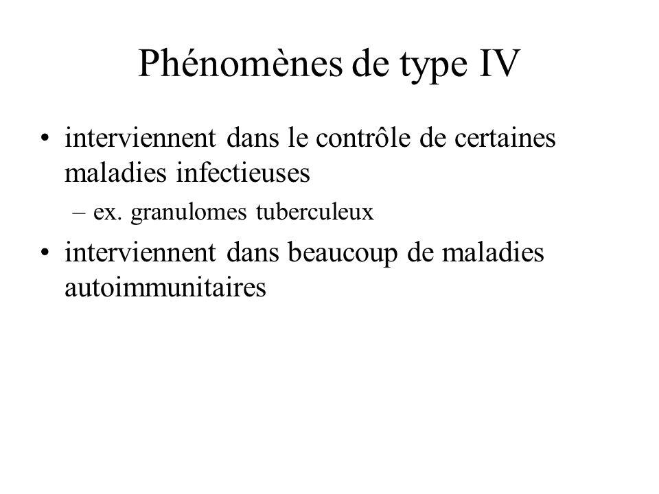 Phénomènes de type IV interviennent dans le contrôle de certaines maladies infectieuses. ex. granulomes tuberculeux.