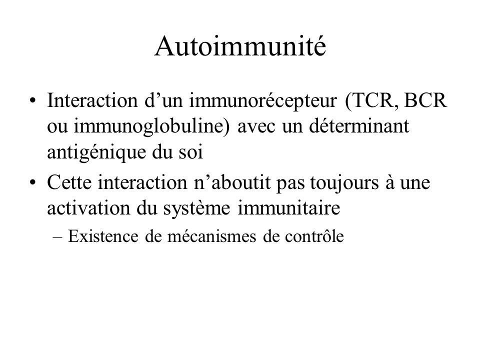 Autoimmunité Interaction d'un immunorécepteur (TCR, BCR ou immunoglobuline) avec un déterminant antigénique du soi.