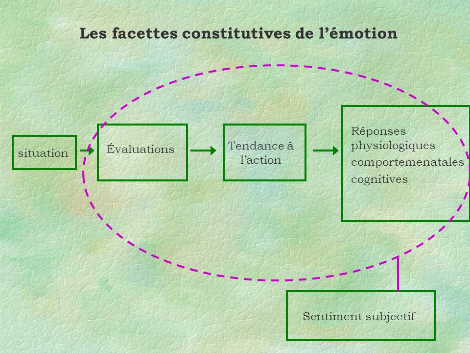 Les facettes constitutives de l'émotion