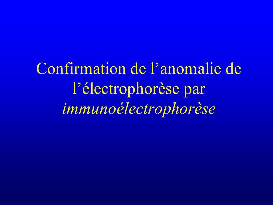Confirmation de l'anomalie de l'électrophorèse par immunoélectrophorèse