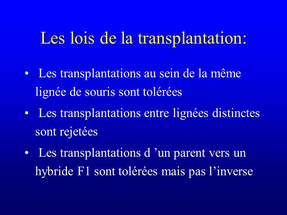 Les lois de la transplantation: