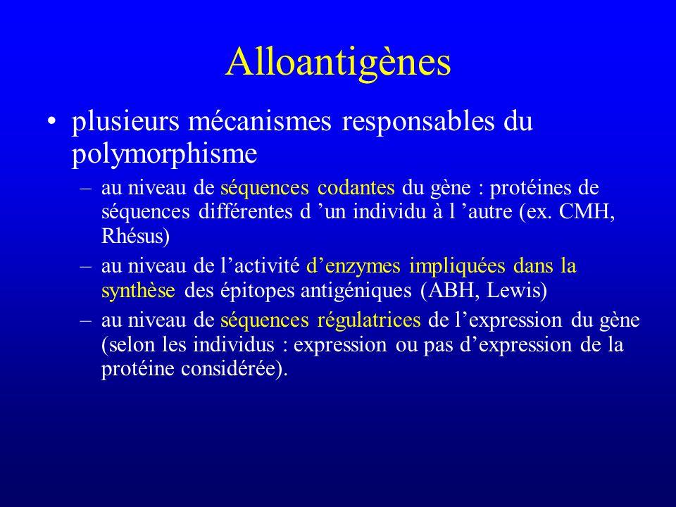 Alloantigènes plusieurs mécanismes responsables du polymorphisme
