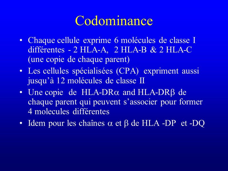Codominance Chaque cellule exprime 6 molécules de classe I différentes - 2 HLA-A, 2 HLA-B & 2 HLA-C (une copie de chaque parent)