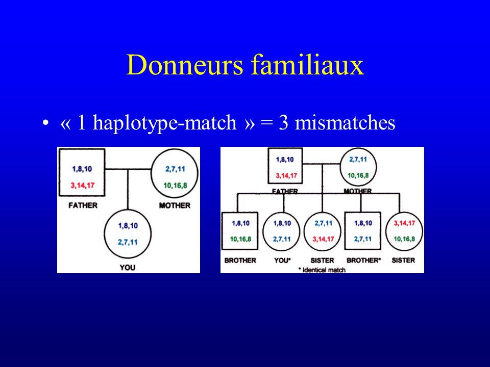 Donneurs familiaux « 1 haplotype-match » = 3 mismatches