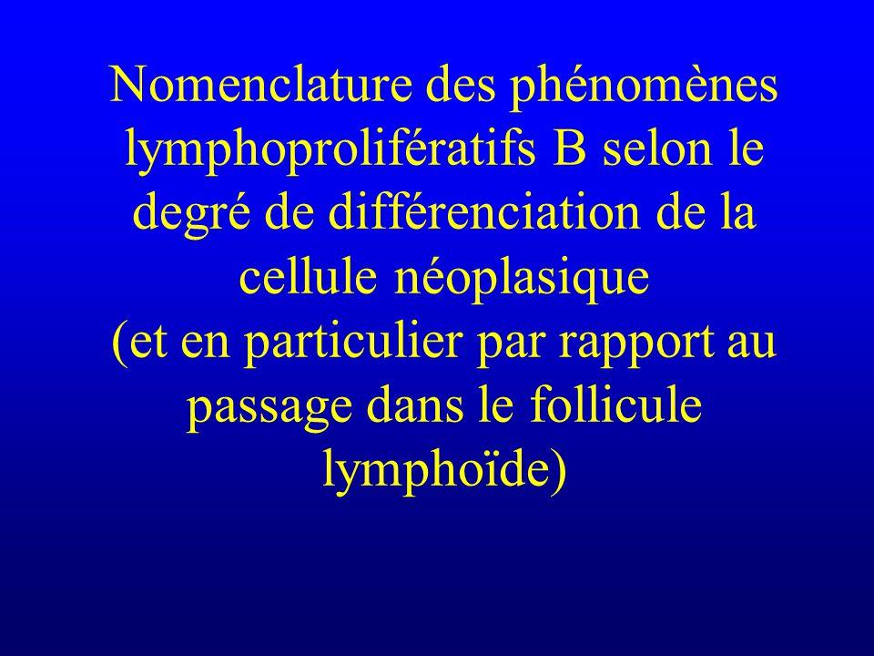 Nomenclature des phénomènes lymphoprolifératifs B selon le degré de différenciation de la cellule néoplasique (et en particulier par rapport au passage dans le follicule lymphoïde)