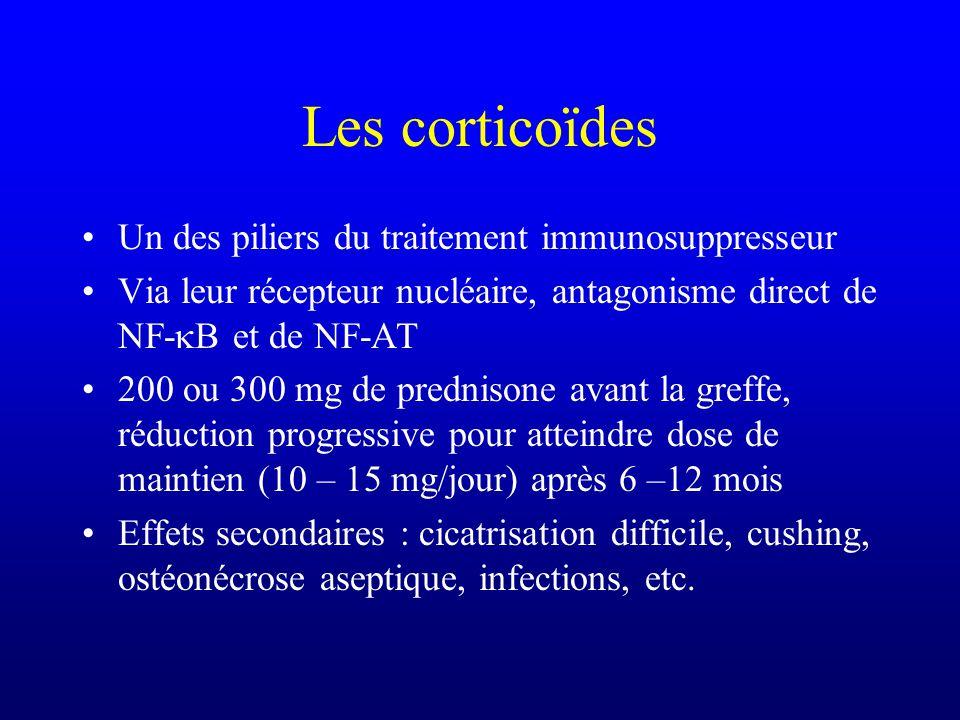 Les corticoïdes Un des piliers du traitement immunosuppresseur