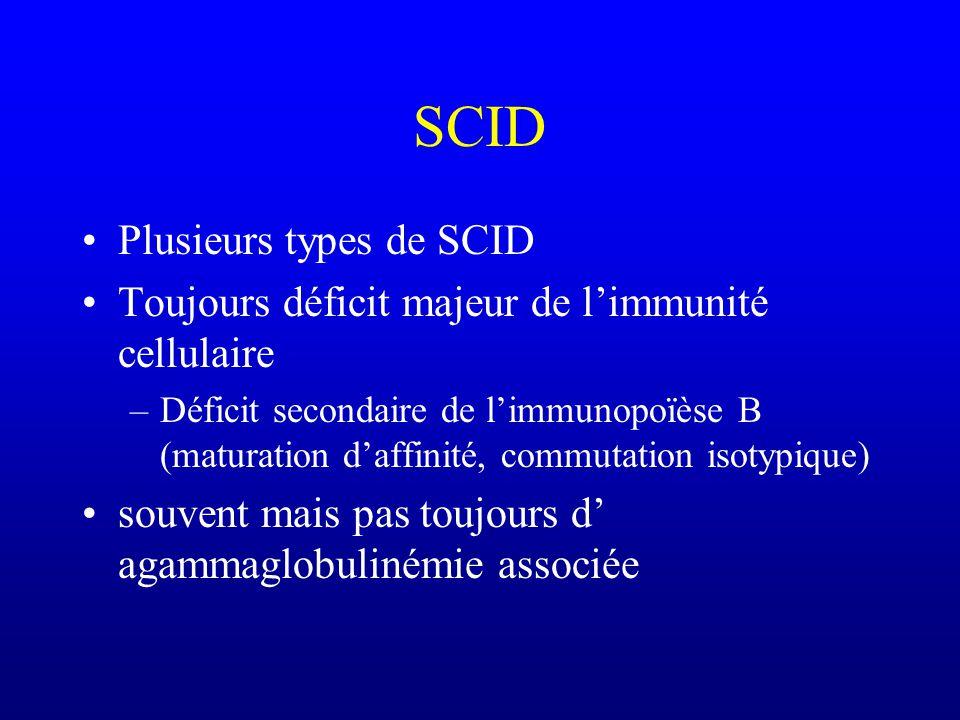 SCID Plusieurs types de SCID