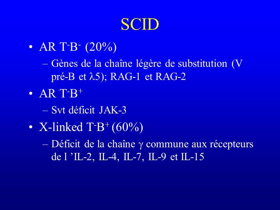 SCID AR T-B- (20%) AR T-B+ X-linked T-B+ (60%)