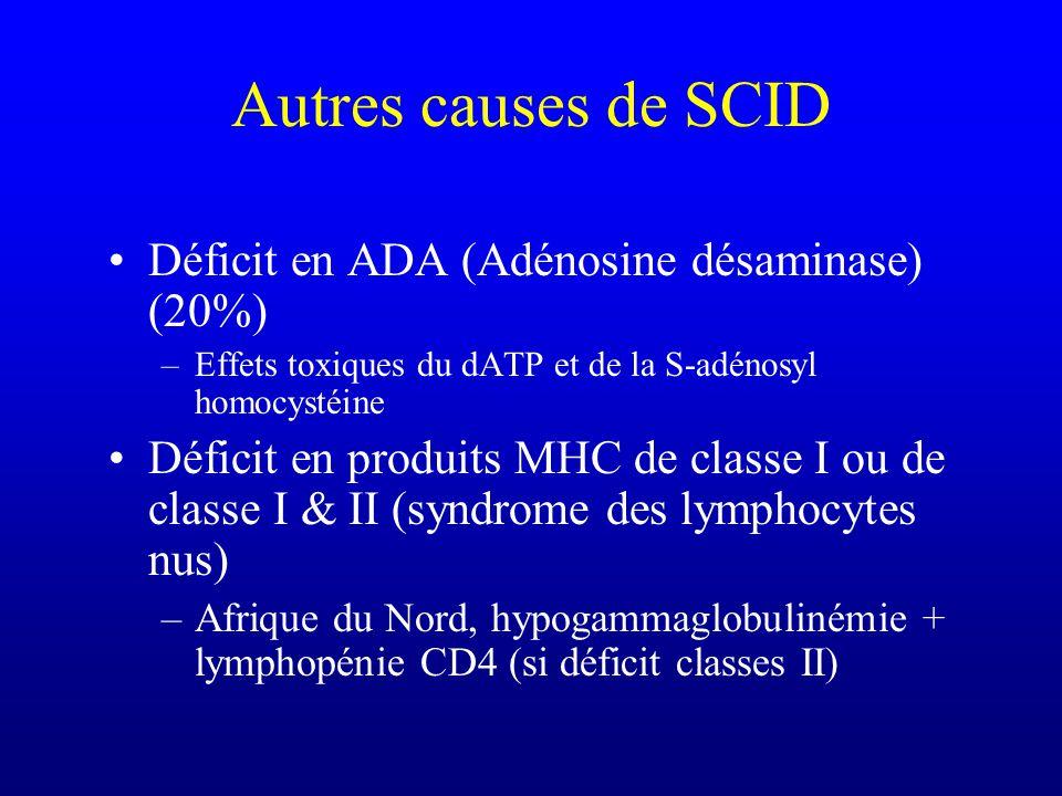 Autres causes de SCID Déficit en ADA (Adénosine désaminase) (20%)