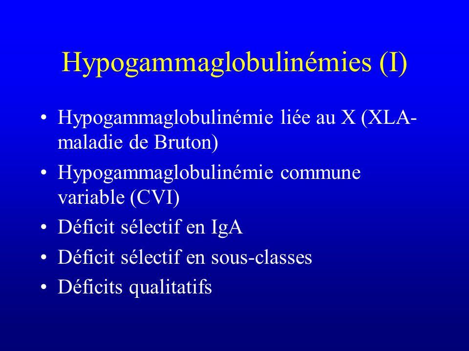 Hypogammaglobulinémies (I)