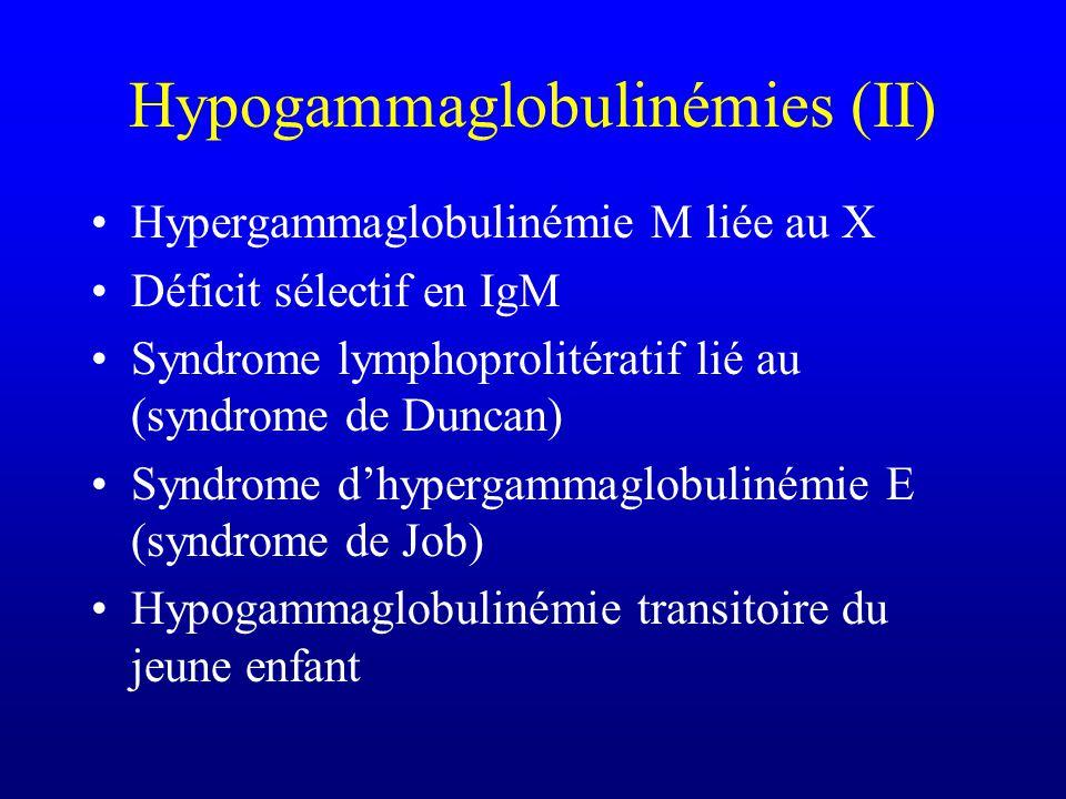 Hypogammaglobulinémies (II)