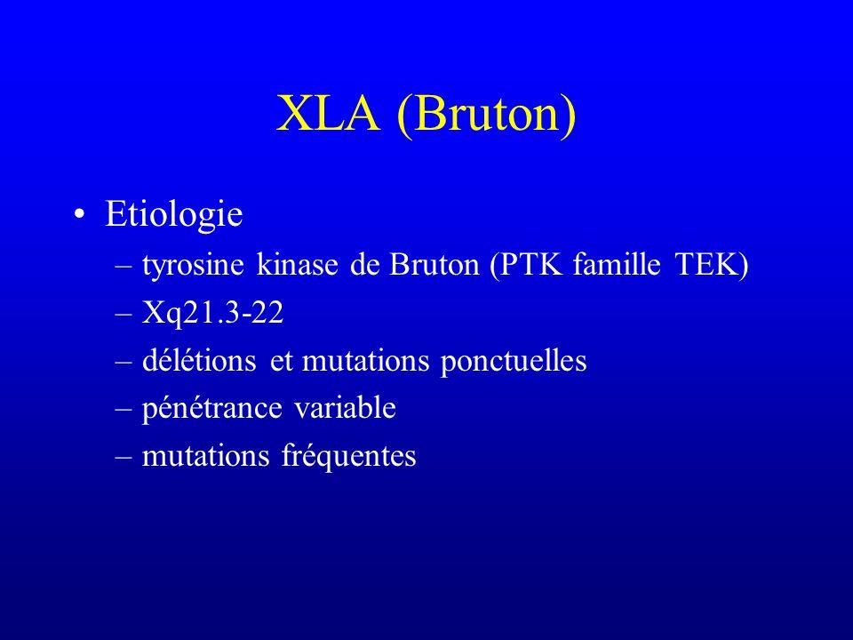XLA (Bruton) Etiologie tyrosine kinase de Bruton (PTK famille TEK)