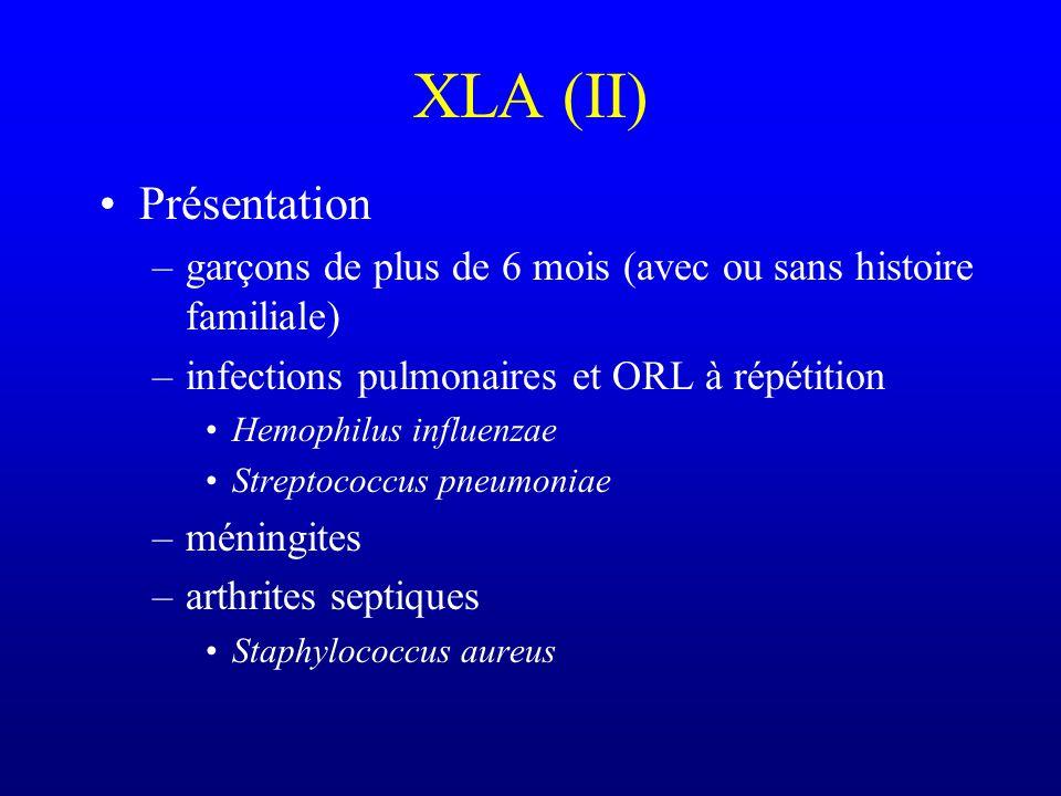XLA (II) Présentation. garçons de plus de 6 mois (avec ou sans histoire familiale) infections pulmonaires et ORL à répétition.