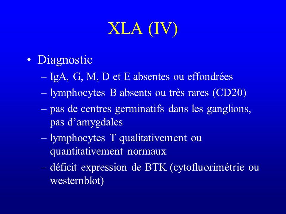 XLA (IV) Diagnostic IgA, G, M, D et E absentes ou effondrées