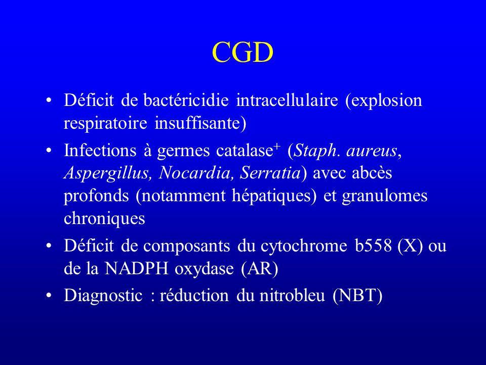 CGD Déficit de bactéricidie intracellulaire (explosion respiratoire insuffisante)