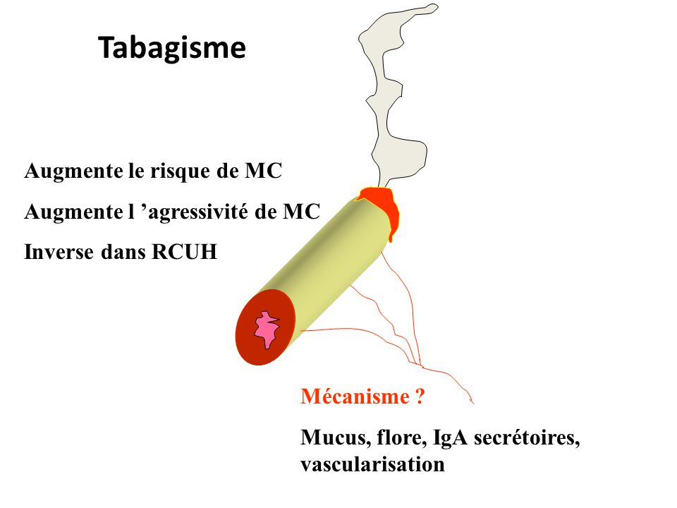 Tabagisme Augmente le risque de MC Augmente l 'agressivité de MC