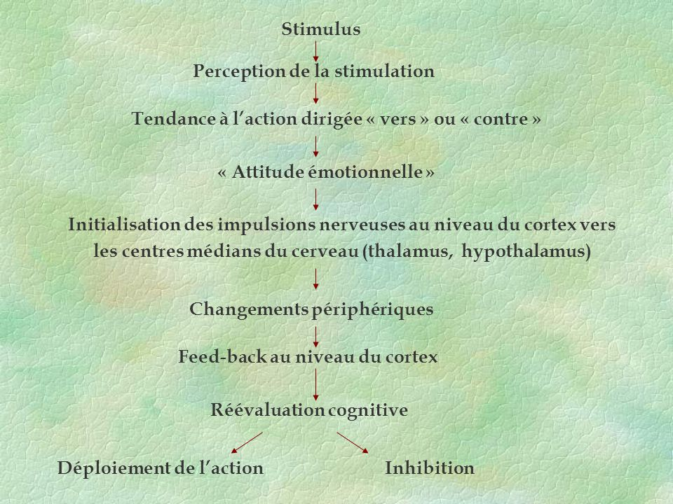 Perception de la stimulation
