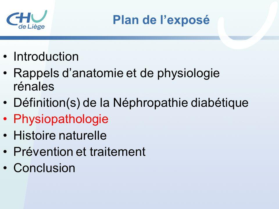 Plan de l'exposé Introduction. Rappels d'anatomie et de physiologie rénales. Définition(s) de la Néphropathie diabétique.