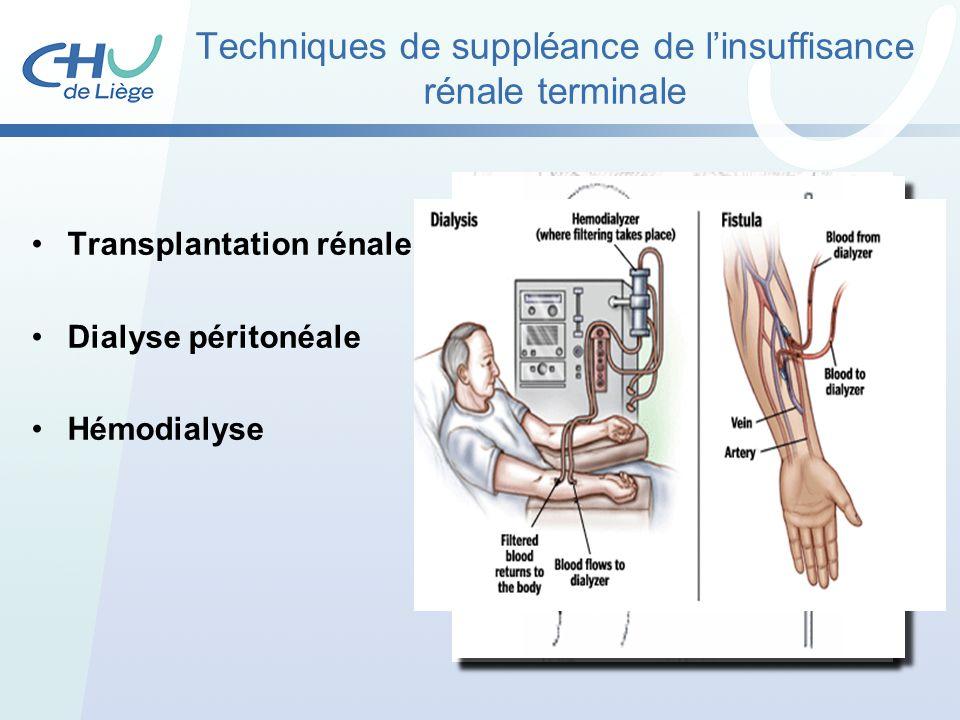 Techniques de suppléance de l'insuffisance rénale terminale