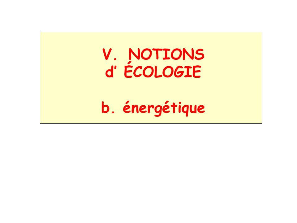 NOTIONS d' ÉCOLOGIE b. énergétique
