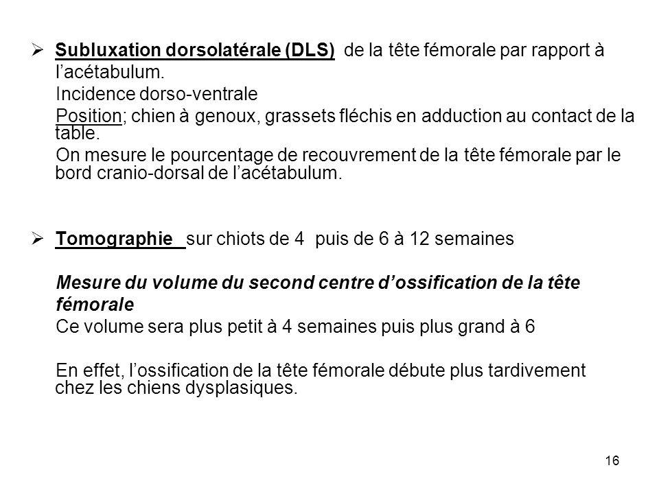 Subluxation dorsolatérale (DLS) de la tête fémorale par rapport à