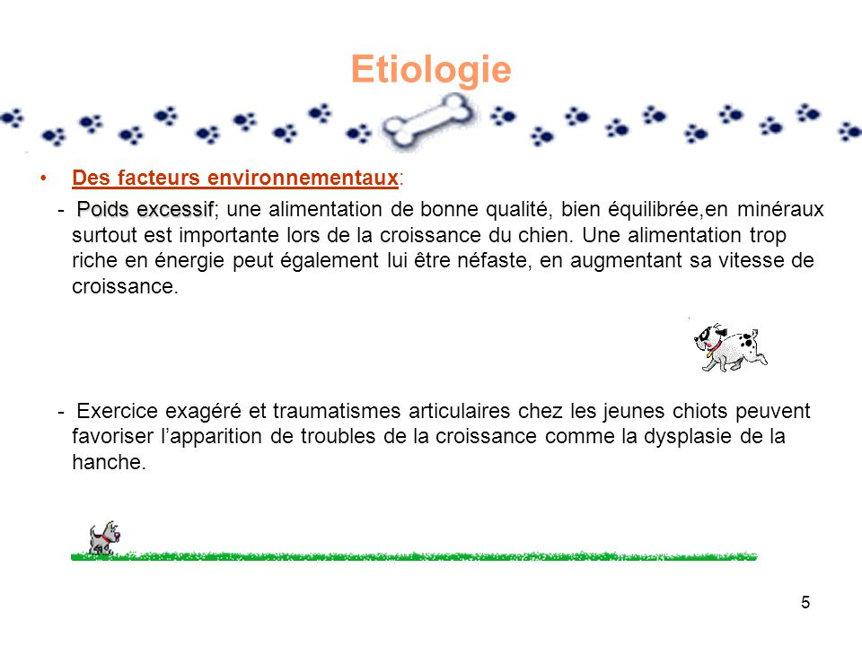 Etiologie Des facteurs environnementaux:
