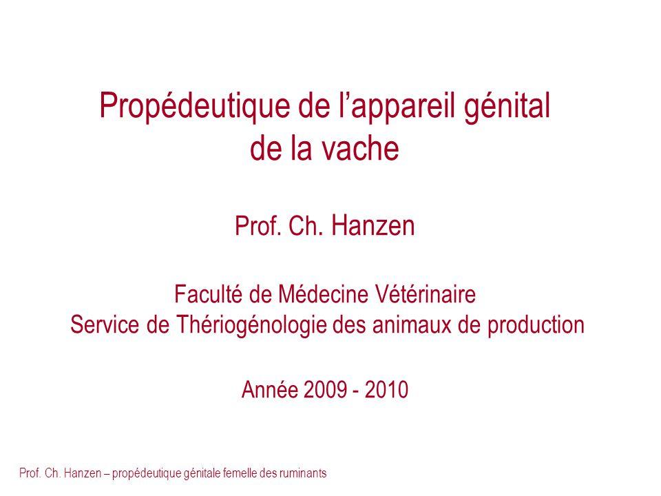 Propédeutique de l'appareil génital de la vache Prof. Ch