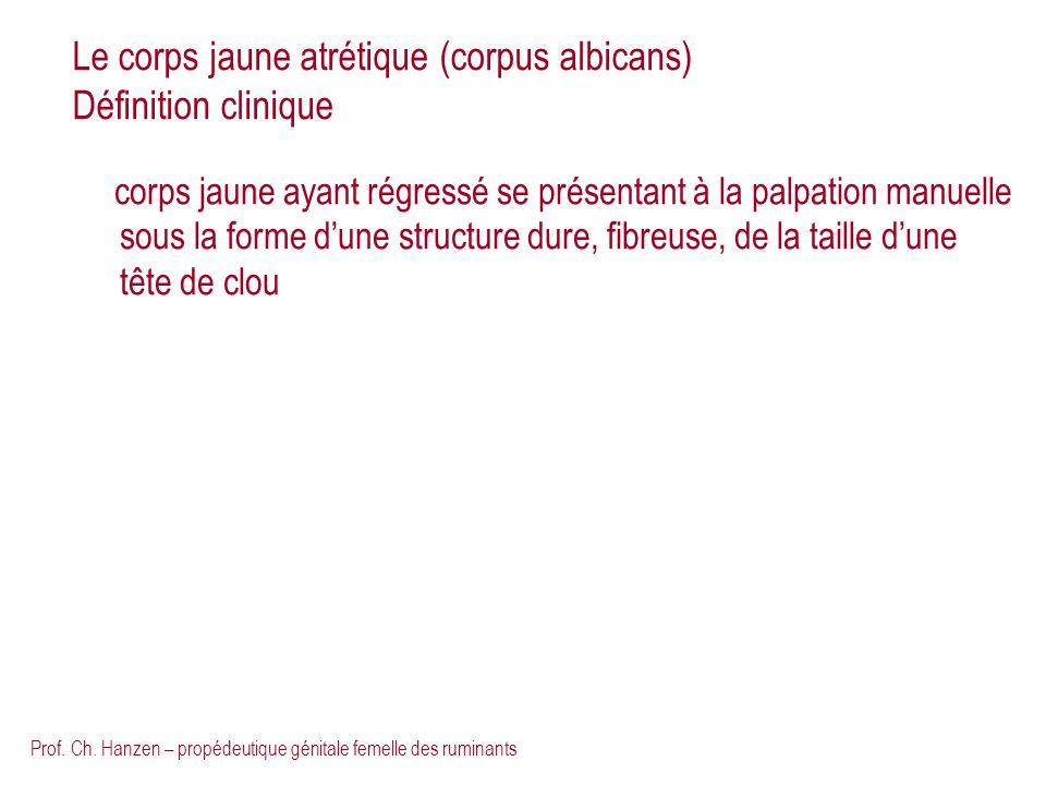 Le corps jaune atrétique (corpus albicans) Définition clinique