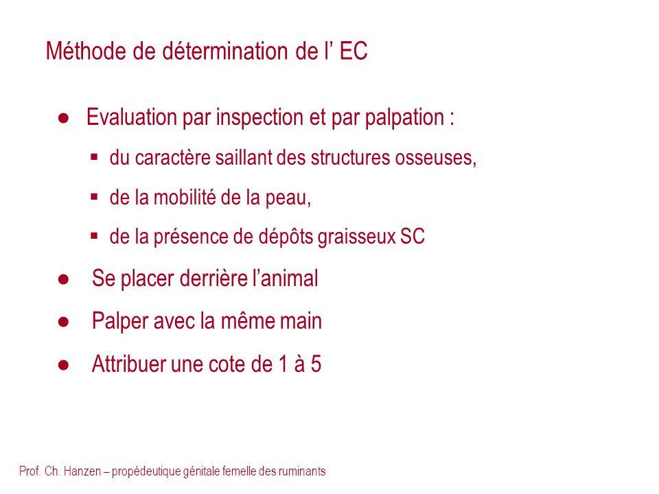 Méthode de détermination de l' EC