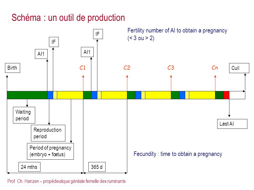 Schéma : un outil de production