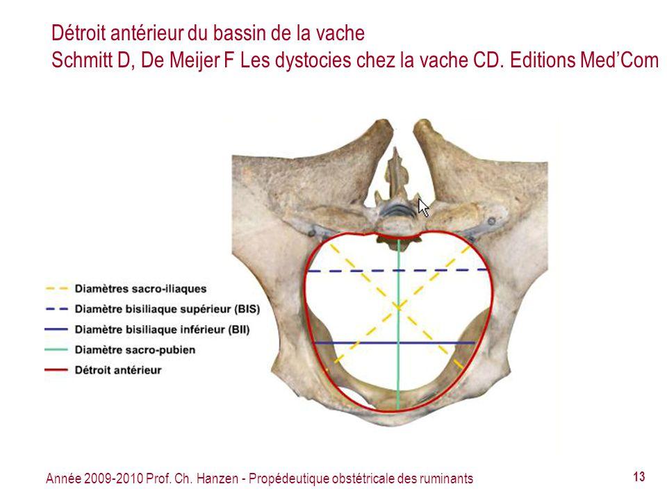Détroit antérieur du bassin de la vache Schmitt D, De Meijer F Les dystocies chez la vache CD. Editions Med'Com