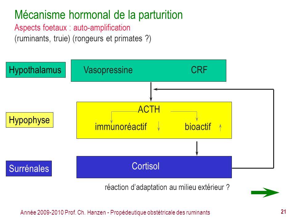 Mécanisme hormonal de la parturition