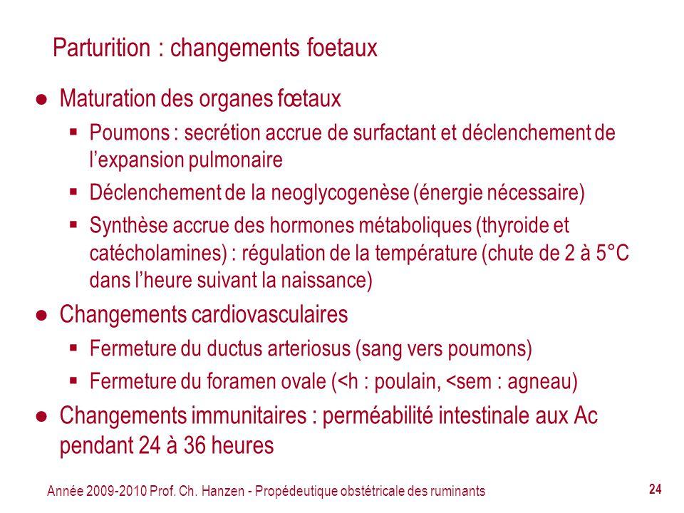 Parturition : changements foetaux