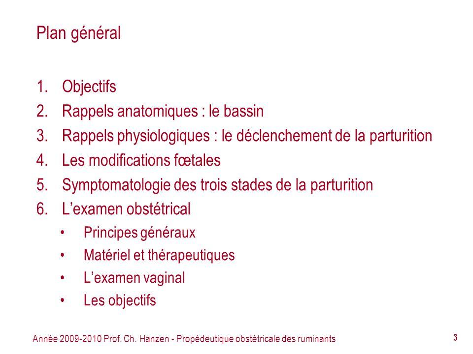 Plan général Objectifs Rappels anatomiques : le bassin