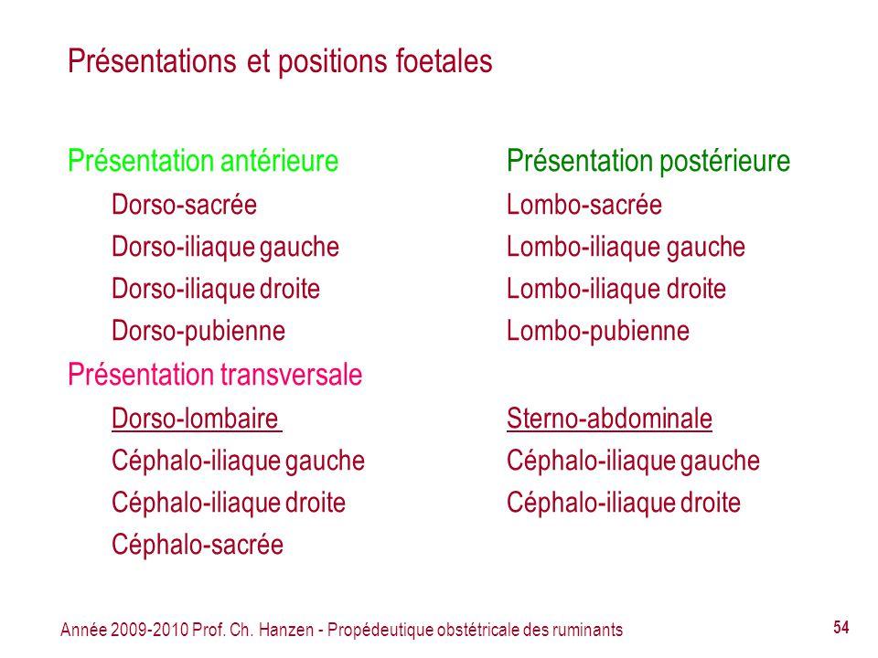 Présentations et positions foetales