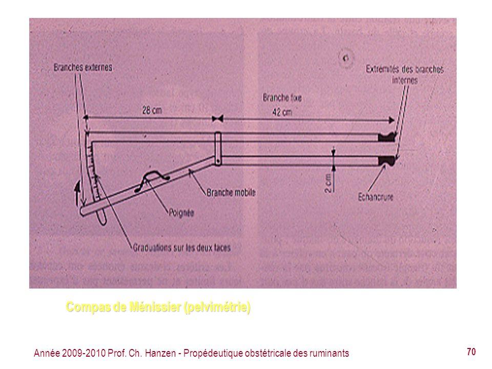 Compas de Ménissier (pelvimétrie)