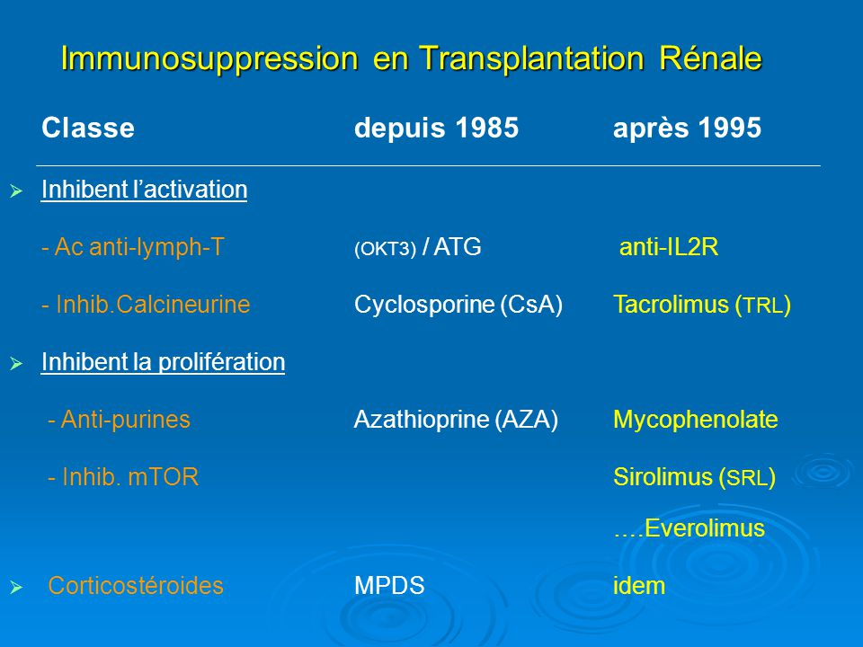 Immunosuppression en Transplantation Rénale