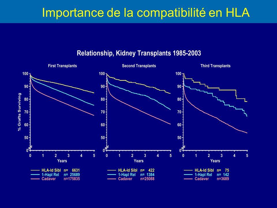 Importance de la compatibilité en HLA