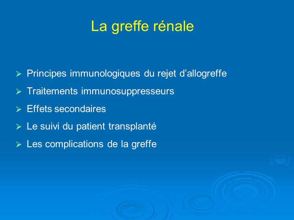 La greffe rénale Principes immunologiques du rejet d'allogreffe