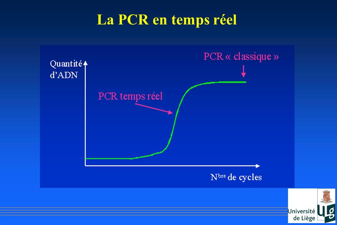 La PCR en temps réel