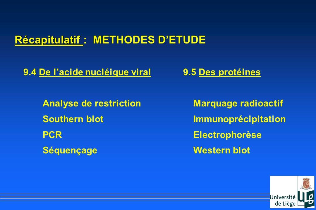 Récapitulatif : METHODES D'ETUDE