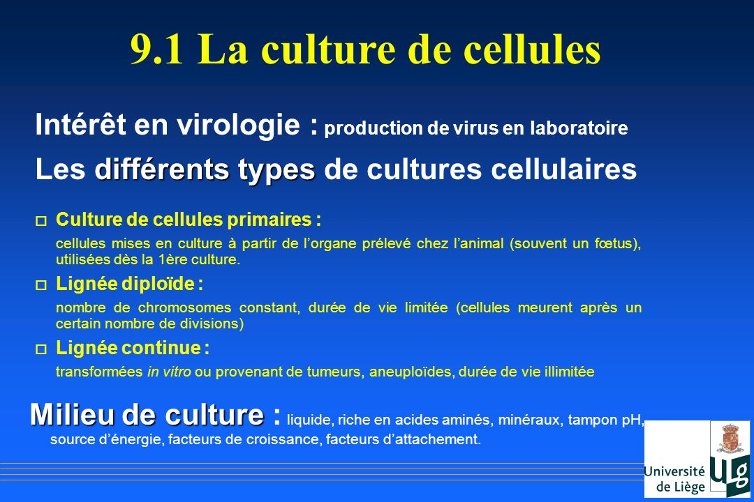 9.1 La culture de cellules Intérêt en virologie : production de virus en laboratoire. Les différents types de cultures cellulaires.