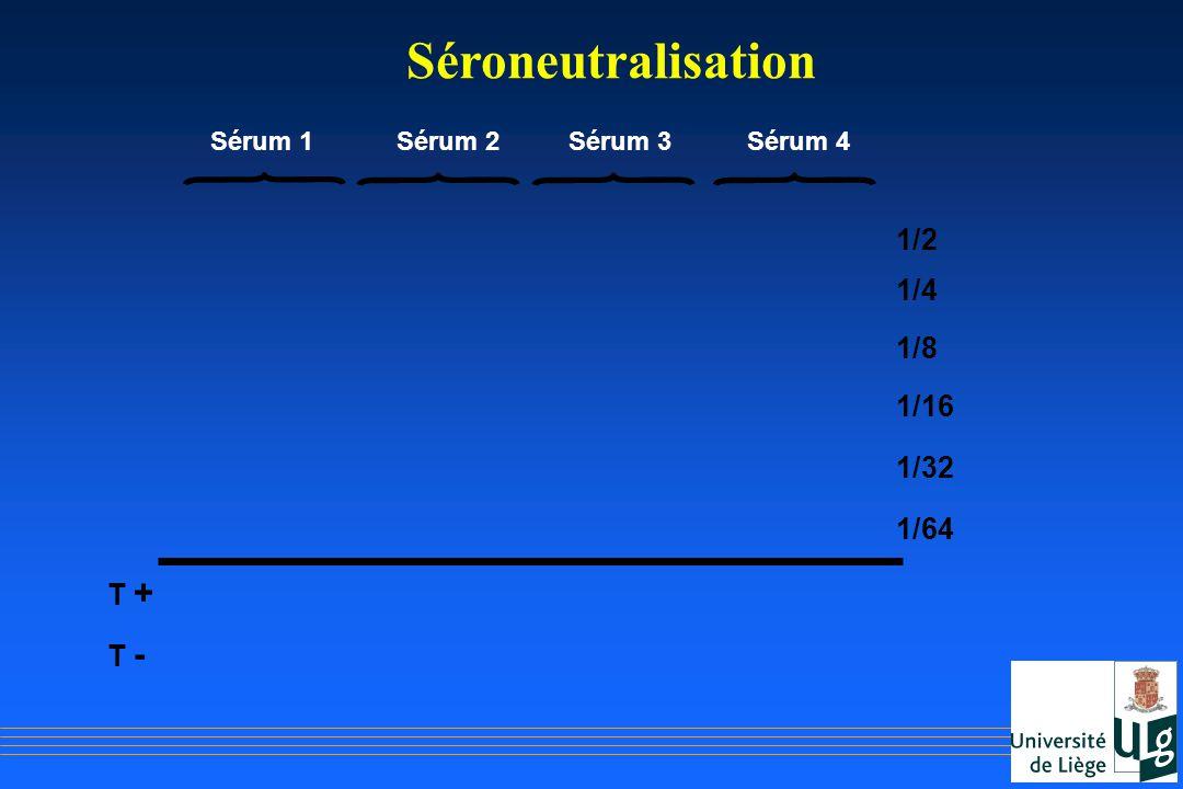 Séroneutralisation 1/2 1/4 1/8 1/16 1/32 1/64 T + T - Sérum 1 Sérum 2