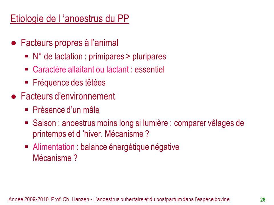 Etiologie de l 'anoestrus du PP