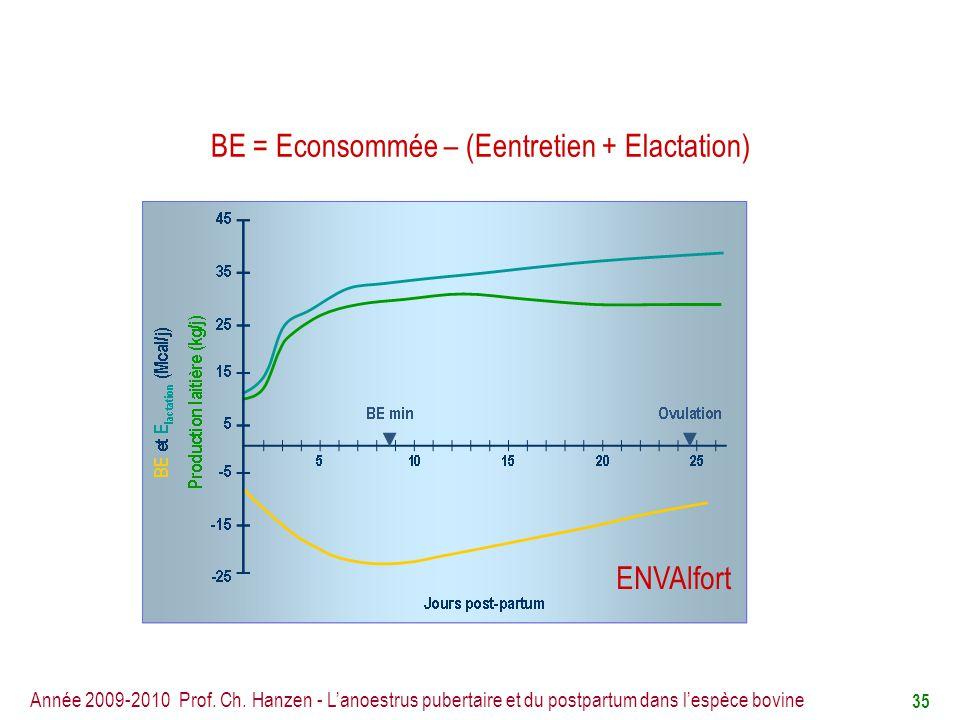 BE = Econsommée – (Eentretien + Elactation)